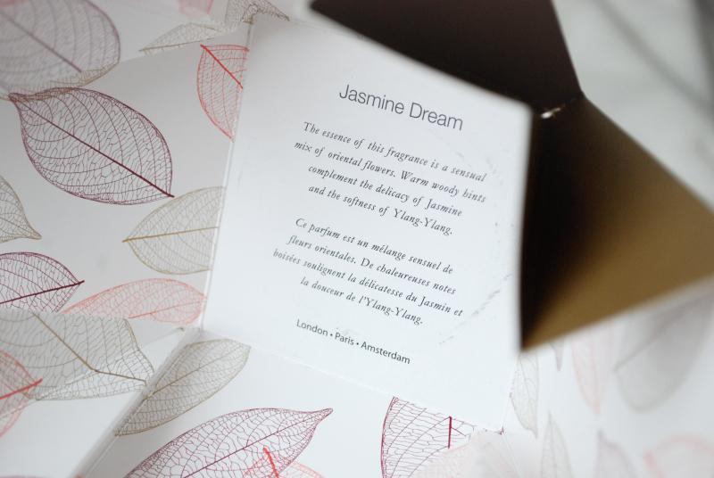 Jasmine-Dream-2.jpg